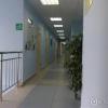 Клиника аллергологии и педиатрии фото