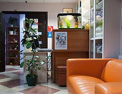 Брянская городская детская больница 2 инн