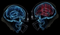 Травмы головы: симптомы сотрясения мозга и способы лечения