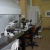 """Клиника """"Геном"""" Калининград фото #6"""