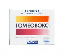 Гомеовокс