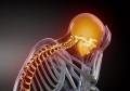 Сигналы организма о болезнях: стоит прислушаться
